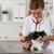 veterinaria · ascolto · cat · malati · gattino - foto d'archivio © fotoedu