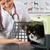 ветеринарный · клинике · персидская · кошка · продовольствие · стороны - Сток-фото © fotoedu