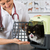 gato · jaula · veterinario · animales · clínica · oficina - foto stock © fotoedu