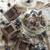 çikolata · yoğurt · yaban · mersini · besleyici · sağlıklı · kahvaltı - stok fotoğraf © Fotografiche