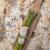 spárga · kardhal · második · köret · hal · étterem - stock fotó © Fotografiche