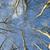 ağaç · kış · tanıtım · düzlem · ağaçlar · mavi · gökyüzü - stok fotoğraf © Fotografiche