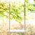 Swing · Веревки · большой · дерево · весны · трава - Сток-фото © FotoVika