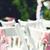 luogo · cerimonia · di · nozze · erba · bianco · sedie · arch - foto d'archivio © fotovika