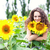 the girl among sunflowers stock photo © fotovika