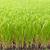 secar · arroz · sementes · massa · produto · fundo - foto stock © frameangel