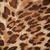 abstract · texture · Leopard · pelle · natura · capelli - foto d'archivio © frameangel