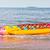 banaan · plantage · oceaan · la · landschap - stockfoto © frameangel