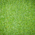 трава · 3d · визуализации · украшенный · кусок · бумаги - Сток-фото © frameangel