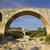 pont julien provence france stock photo © frank11