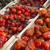 maduro · cereja · orgânico · tomates · jardim · pronto - foto stock © frank11
