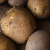 potatoes in hessian sack from above stock photo © frannyanne