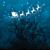 étoiles · bleu · homme · ciel · main · silhouette - photo stock © freesoulproduction