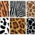 vecteur · animaux · peau · textures · tigre · zèbre - photo stock © freesoulproduction