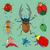vert · cartoon · coccinelle · icône · vecteur · illustration - photo stock © frescomovie