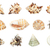 set of shell all in focus high res isolated on a white backgr stock photo © frescomovie