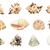 孤立した · 白 · クローズアップ · 食品 · 自然 - ストックフォト © frescomovie