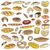 set of doodles bread stock photo © frescomovie