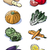 eight vegetables   colors stock photo © fresh_7266481