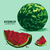 sweet · juteuse · pastèque · blanche · alimentaire · fruits - photo stock © frimufilms