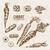 手描き · ヴィンテージ · 実例 · ニンジン · ベクトル · 水彩画 - ストックフォト © frimufilms