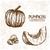 digitális · vektor · részletes · sütőtök · kézzel · rajzolt · szín - stock fotó © frimufilms