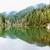 lac · montagnes · Roumanie · montagne · environnement · pin - photo stock © frimufilms