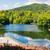 tó · hegyek · Romania · hegy · környezet · fenyőfa - stock fotó © frimufilms