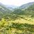 деревне · гор · Черногория · типичный · Sunshine · день - Сток-фото © frimufilms