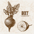 digitale · vettore · dettagliato · line · arte · vegetali - foto d'archivio © frimufilms