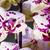 floral · rosa · aquarela · orquídeas · verde · palma - foto stock © frimufilms