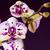 gyönyörű · virágok · fehér · szeretet · születésnap · szépség - stock fotó © frimufilms