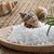 sal · do · mar · conchas · corpo · mar · beleza · verde - foto stock © g215