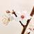 blooming sakura branch stock photo © g215