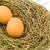 isoliert · Vogelnest · Eier · weiß · Bild · erschossen - stock foto © gavran333