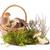 ヤマドリタケ属の食菌 · ポルチーニ · 白 · 食品 · 自然 · 食べ - ストックフォト © gbuglok