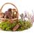ヤマドリタケ属の食菌 · キノコ · 新鮮な · 生 · バスケット - ストックフォト © gbuglok