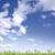 зеленая · трава · Blue · Sky · облачный · облака · весны - Сток-фото © Gbuglok