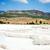 自然 · ミネラル · 石灰岩 · プール · 表面 · テクスチャ - ストックフォト © gekaskr