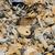 hegy · szemét · hulladék · szeméttelep · helyszín · szennyezés - stock fotó © gemenacom
