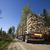 Truck with timber stock photo © gemenacom