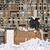 enterrado · empresária · escritório · negócio · menina · terno - foto stock © gemenacom