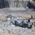 石炭 · トラック · オープン · マイニング · サイト · 建設 - ストックフォト © gemenacom