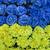 bandeira · artificial · flores · céu · flor · papel - foto stock © GeniusKp