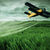 a crop dusting plane working over a field stock photo © geribody