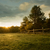 beautiful sunrise on the farm stock photo © geribody