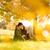 appassionato · bacio · parco · albero · cielo · ragazza - foto d'archivio © Geribody