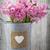 jacinto · rosa · mesa · de · madeira · verde · cabeça · planta - foto stock © gitusik