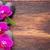 pierres · orchidée · gouttes · d'eau · fleur · feu · feuille - photo stock © gitusik