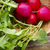 radish on the wooden table stock photo © gitusik